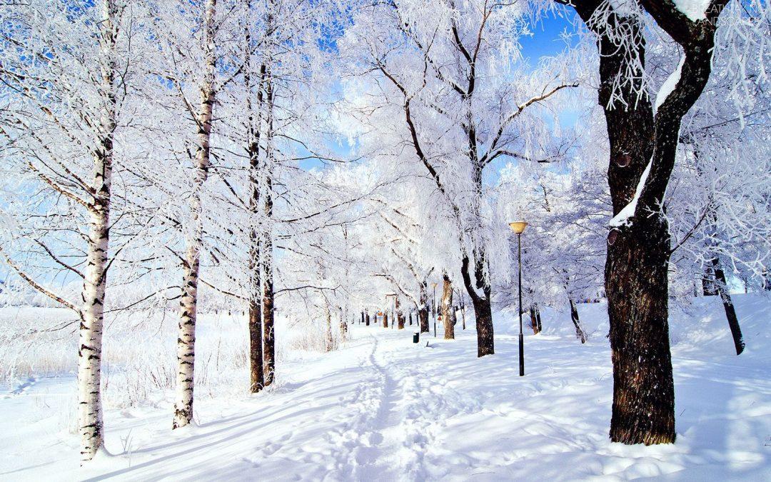 Jul i Järnavik